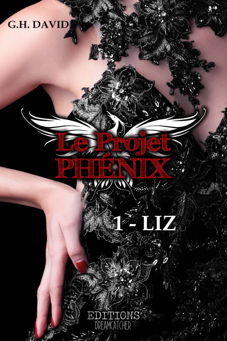 1ère de Couverture LIZ Dive Ebook.png